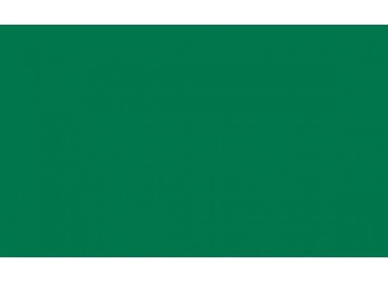 Colore profilo Verde 6005 semilucido - colore accessori nero